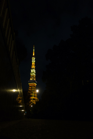 [IMAGE]東京タワー(by RX-100)【補正前】